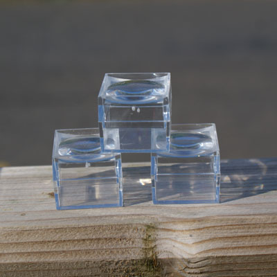 Three Small Magnified Insect Boxes