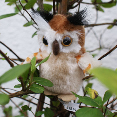 Mini Owl Beanie Soft Toy