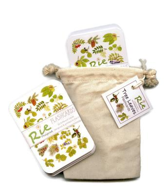 2 Pack Childrens Tree Leaves Flashcards