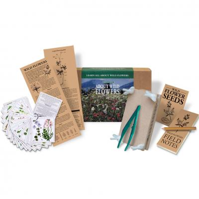 Flights of Fancy About Wild Flowers Kit
