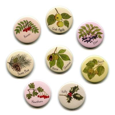 Eight British Tree Leaves Insect Fridge Magnets 3