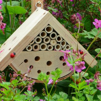 Hanging or Fence Beneficial Bug Box