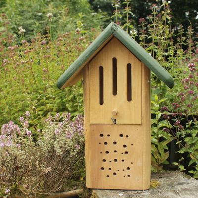 Butterfly and Bee house