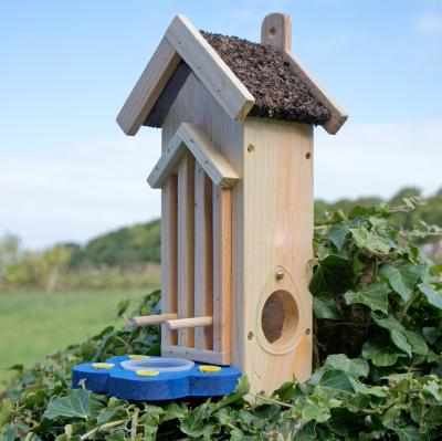 Butterfly and Moth House with Feeder