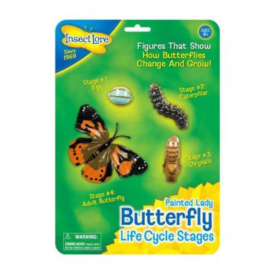 Butterfly Lifecycle Figures