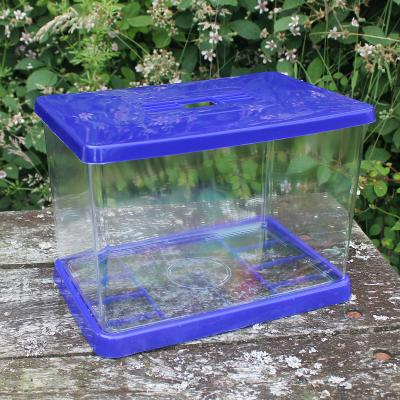 Clear Plastic Aquarium with Lid and Base