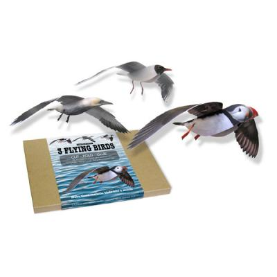 Flying Seabirds Card Kit