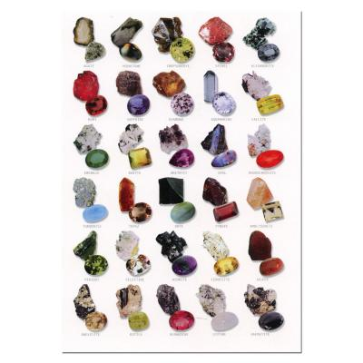 Gemstones Identification Postcard