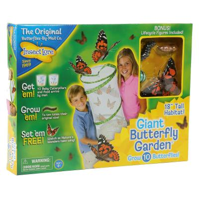 Giant Butterfly Garden Live Kit