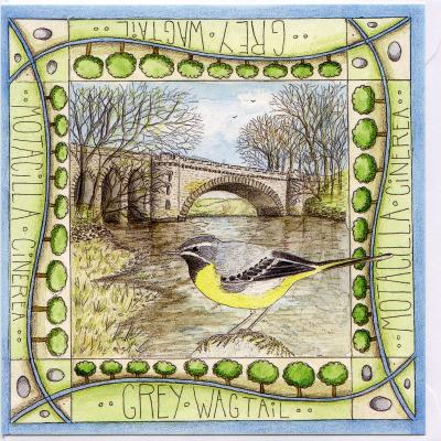 Grey Wagtail Tongland Blank Greetings Card