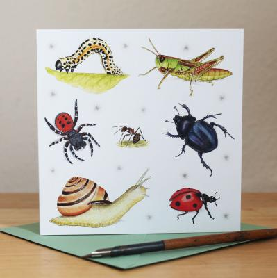Invertebrates Insects Blank Greetings Card