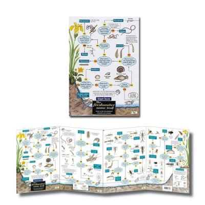 Fold-out Laminated Freshwater Name Trail