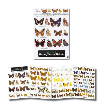 Fold-out Laminated Guide to Butterflies