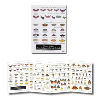 Fold-out Laminated Guide to Day-flying moths of Britain