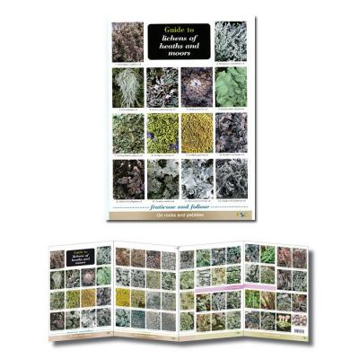 Laminated Foldout Guide to Lichens of Heaths and Moors