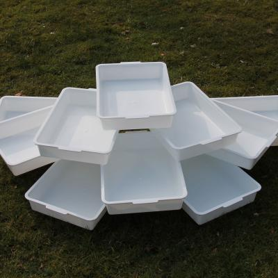 Pack of Ten White Pond Dipping Sample Trays