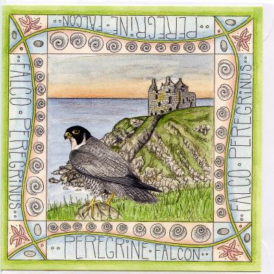 Peregrine Dunskey Castle Blank Greetings Card