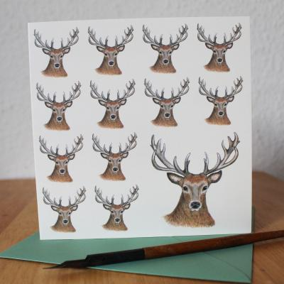Red Deer Stag Blank Greetings Card