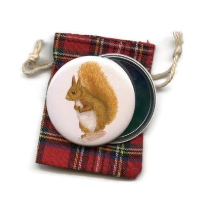 Red Squirrel  Pocket Handbag Mirror