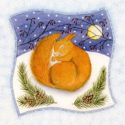 Snowy Red Squirrel Blank Christmas Greetings Card