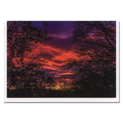 Sunset Blank Photographic Greetings Card A6