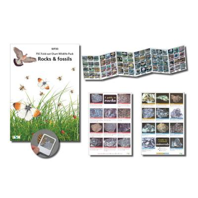 Wildlife Chart Pack Rocks and Fossils
