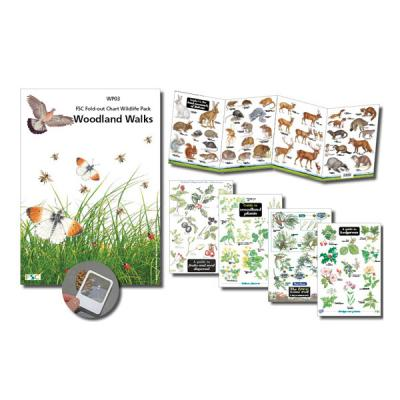 Wildlife Chart Pack Woodland Walks