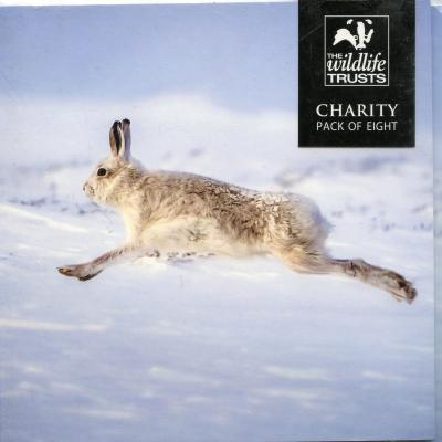 Wildlife Trusts Mountain Hare Pack of Christmas Cards
