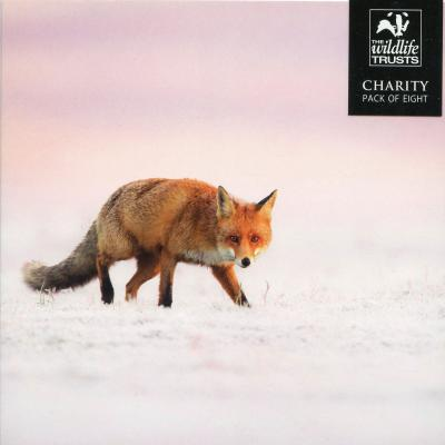 Wildlife Trusts Red Fox Charity Christmas Cards