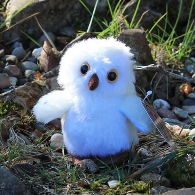 Snowy Owl Bean Buddy Mini Soft Toy