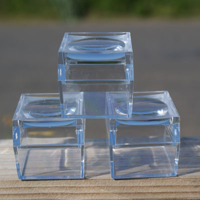Three Magnified Insect Boxes