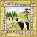 Beltie Blank Greetings Card