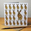 Brown Hare Blank Greetings Card