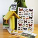 Butterfly Feeding Kit