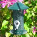 Diamond Sunflower Seed Feeder