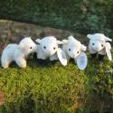 Four Mini Lamb Soft Toys