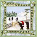 Galloway Beltie Blank Christmas Greetings Card