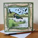 Lapwing Mersehead Blank Greetings Card