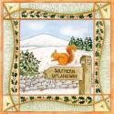 Red Squirrel Blank Christmas Greetings Card