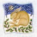 Snowy Brown Hare Blank Christmas Greetings Card