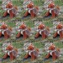 Ten Mini Fox Soft Toys