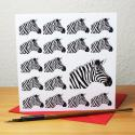 Zebra Blank Greetings Card