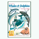 Whales and Dolphins Playing Cards